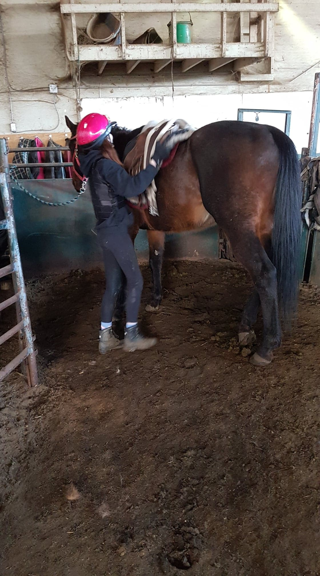 The kids in the Junior Jockeys of Flying Cross Ranch program learn all aspects of being a jockey and taking care of horses (photo courtesy of Roy Sturgeon).