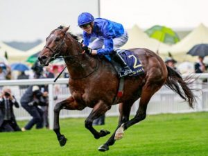 Blue Point - Photo Courtesy of Godolphin.com -