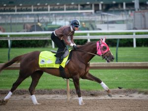 Master Fencer Belmont Stakes