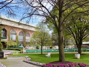 Belmont Park season