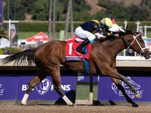 Covfefe horse