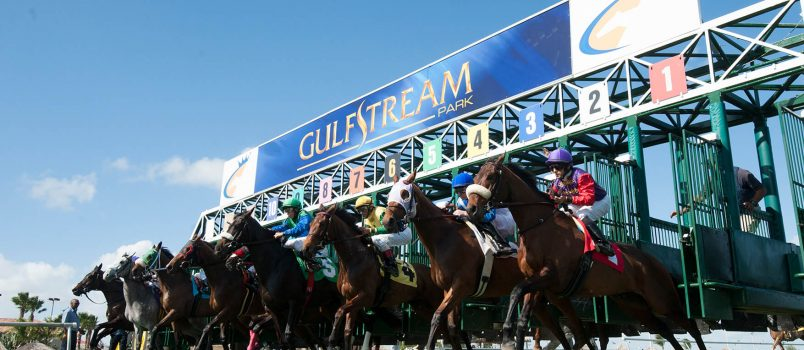 Claiming Crown - Photo courtesy of claimingcrown.com / Gulfstream Park.