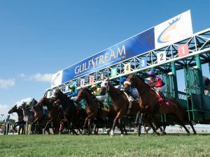 Fountain of Youth Betting Odds: Gulfstream's Late Pick 5