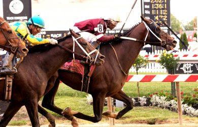 Tenfold Horse