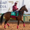 North America - Contributed by Laura Green / Saudi Arabia Jockey Club