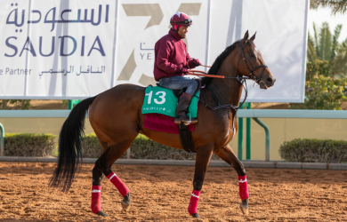 North America - Contributed by Laura Green / Saudi Arabia Jockey Club