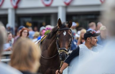 Horse racing - USRacing.com Photo