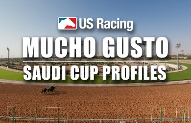 Saudi Cup Betting Odds Mucho Gusto Profile