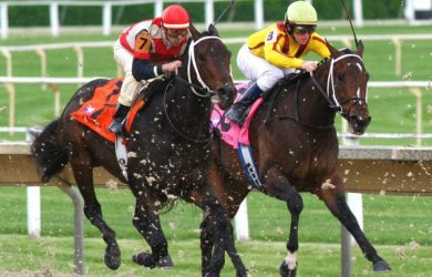 Horse Racing Handicapping: Tips You Need To Know
