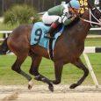 kentucky-derby-preps-betting-sam-davis-stakes