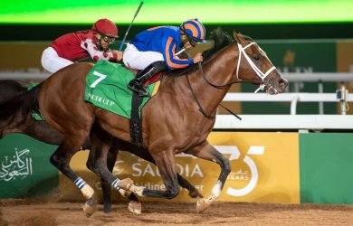 Maximum Security -Courtesy of: Jockey Club of Saudi Arabia/Doug DeFelice