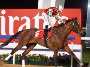 Saudi Cup Betting Odds North America: Horse Racing Profile