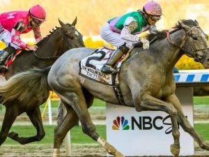 Saudi Cup Betting Odds Tacitus: Horse Racing Profile