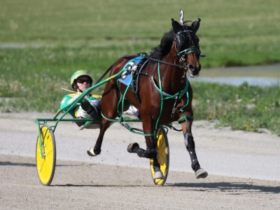 Harness Racing History: First Pacing Mare Wins Horse of the Year