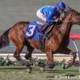 Jeff Ruby Steaks Betting: Derby Prep Race Preview