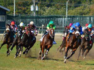 Kentucky Derby Top 10: Tiz the Law is No. 1 Favorite