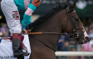 Louisiana Derby: $1M purse, Automatic Kentucky Derby Spot