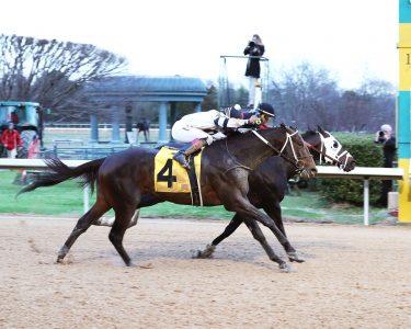 Oaklawn Park Betting Odds