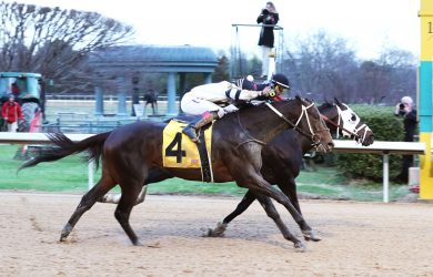 Oaklawn Park Betting Odds