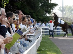 When Good Horseplayers Go Bad Series - Read Part 3