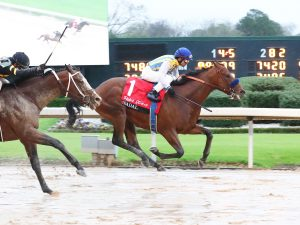 Arkansas Derby Betting Odds: A Look Into This Split Race