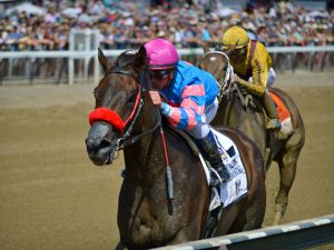 Oaklawn Park Handicapping: Best Live Racing Available