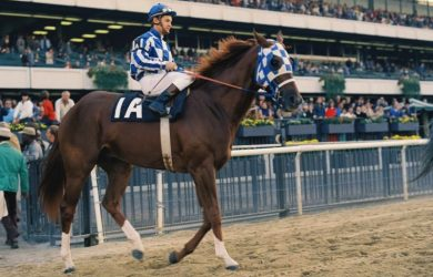 Secretariat - Photo courtesy of Bob Coglianese / NYRA