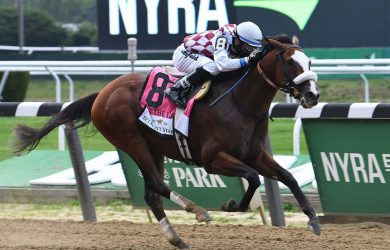 Tiz the Law at Belmont Stakes 2020