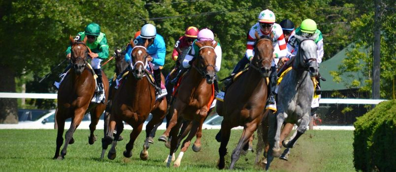 Horse Racing - USR Photo