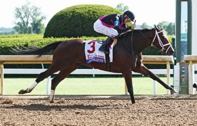 Art Collector - Winner 2020 Blue Grass Stakes - Courtesy of Keeneland