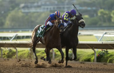 Maximum Security San Diego Handicap