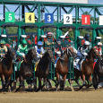 Saratoga Race Course - US Racing Photo