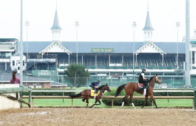 King Guillermo - Churchill Downs