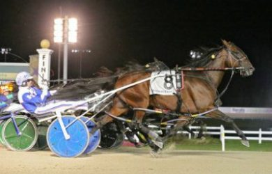 Sandbetweenmytoes - Courtesy of U.S. Trotting Association website