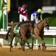 Mishriff - Credit: Jockey Club of Saudi Arabia / Neville Hopwood