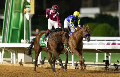 Mishriff - Credit: Jockey Club of Saudi Arabia / Neville Hopwood
