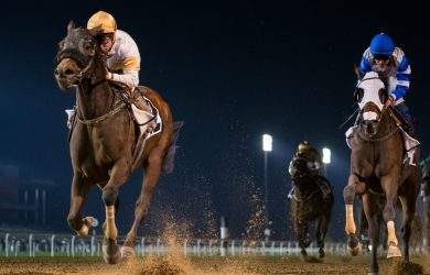 Speedy Move credit by Dubai Racing Club, Erika Rasmussen