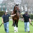 Keepmeinmind  - Photo Courtesy of Oaklawn Park
