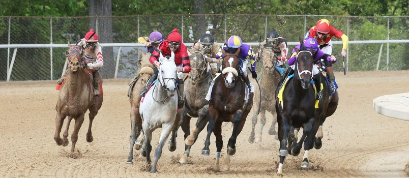 Silver State - Photo Courtesy of Oaklawn Park