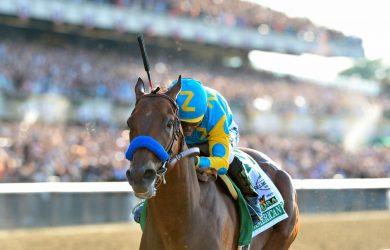 American Pharoah in the 2015 Belmont Stakes - Photo Courtesy of NYRA/Adam Mooshian