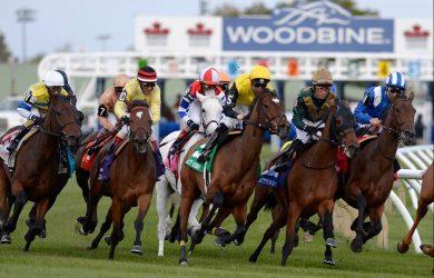 Woodbine Racetrack - Photo Courtesy of woodbine